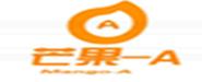 天津艾上芒果文化传播有限公司